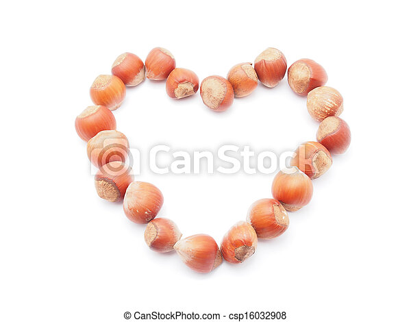 heart of the hazelnuts on a white background - csp16032908