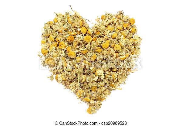 Heart of yellow chamomile on white background - csp20989523