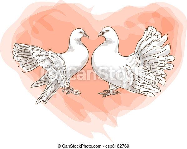 Un par de palomas con símbolo de amor, corazón rojo. - csp8182769