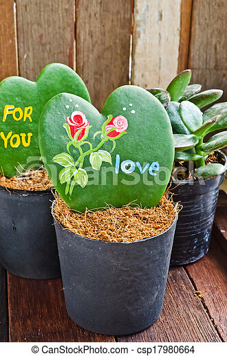 Heart Shaped Plant Kerrii Hoya With Painted Roses And Message Of