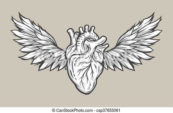 Heart With Wings Tattoo Symbol Anatomical Heart With Wings