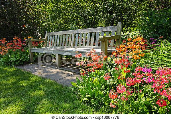 helder, bloemen, houten bank, bloeien - csp10087776