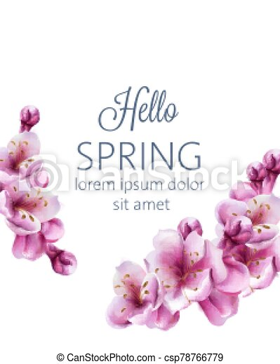 Hello spring cherry blossom flowers greeting card with place for text - csp78766779