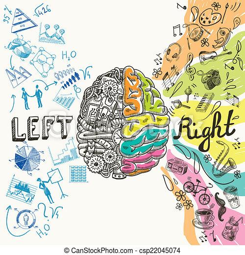 hemisférios, cérebro, esboço - csp22045074