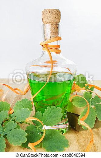 herbário, shampoo - csp8640594