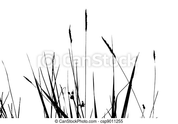 herb silhouette on white background, vector illustration - csp9011255