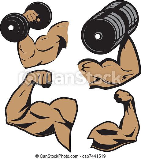 herb, weightlifter - csp7441519