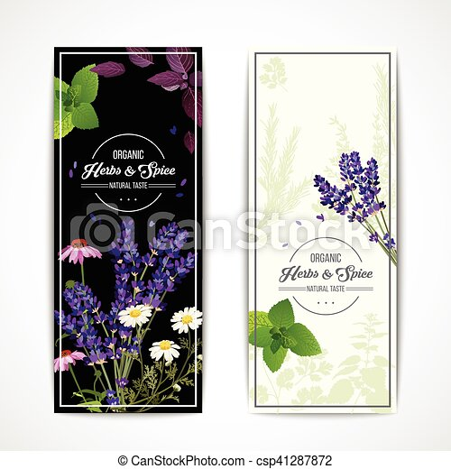 Herbal Banners With Wildflowers And Spices Card With Organic Herbs And Blooming Flowers And Spices On Black And White