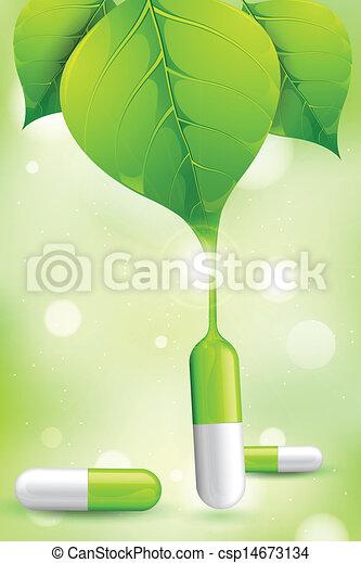 Herbal Medicine - csp14673134