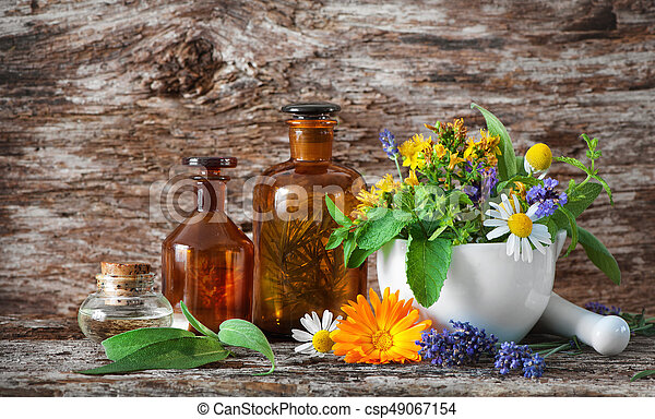 Herbal medicine. Medicinal plants - csp49067154
