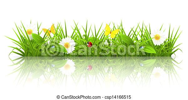 herbe, 10eps, vert - csp14166515