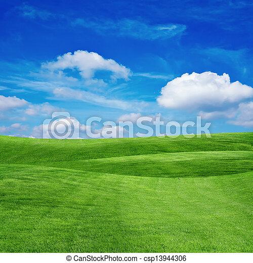 herbe champ, ciel, nuageux - csp13944306