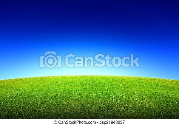 herbe champ, ciel, vert - csp21943037