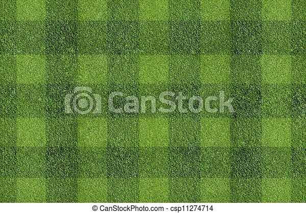 herbe champ - csp11274714