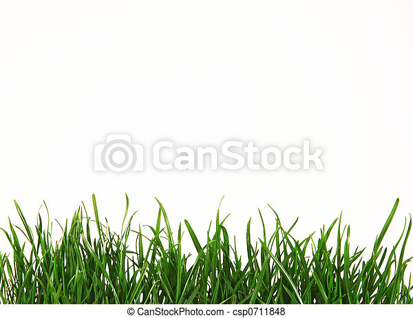 herbe - csp0711848