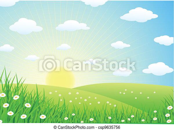herbe, paysage - csp9635756