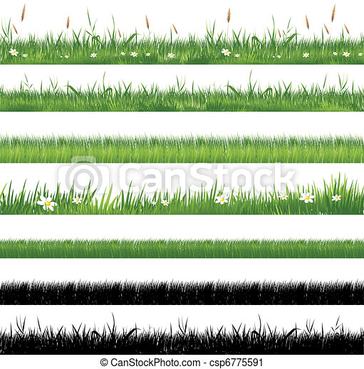 herbe, vert, collection - csp6775591