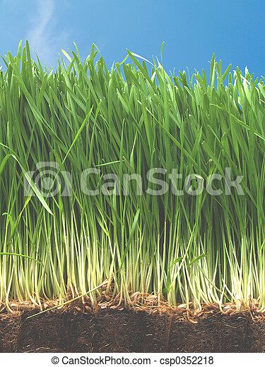 herbeux, colline - csp0352218