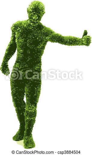 herbier, (vector), homme - csp3884504