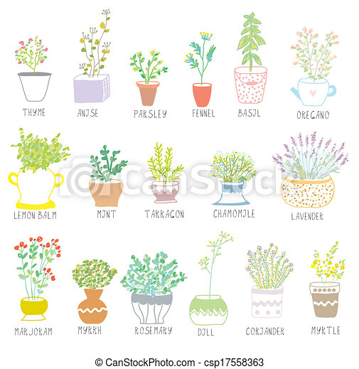 Herbs and spices set in pots with flowers illustration - csp17558363