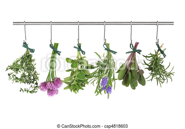 Herbs Hanging and Drying - csp4818603