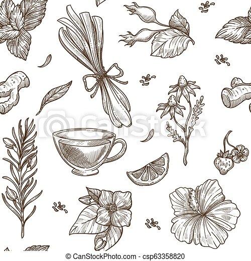 Herbs sketch pattern background. Vector seamless design of herbal tea - csp63358820