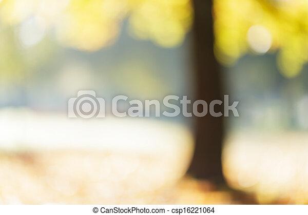 herbst, ahorn, fokus, hintergrund, heraus - csp16221064