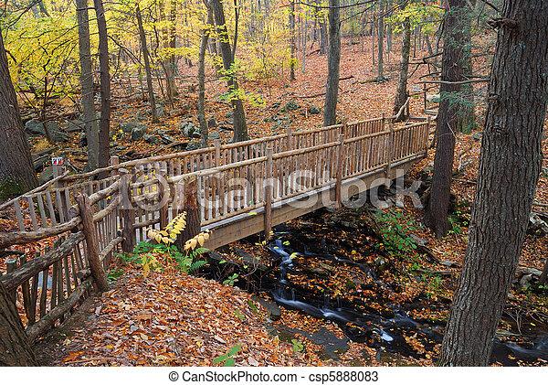 Herbstbrücke - csp5888083
