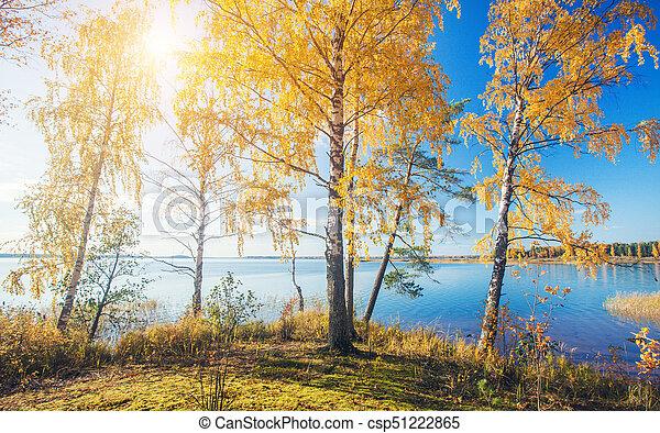 Herbstpark. Herbstbäume und See - csp51222865