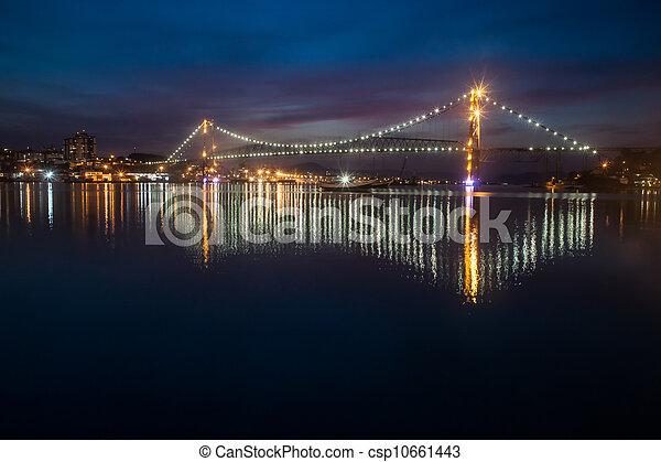 Hercilio Luz Bridge at Night - csp10661443