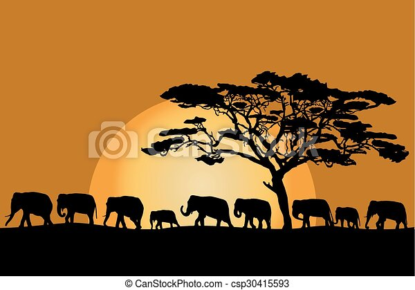 herd of elephants vector