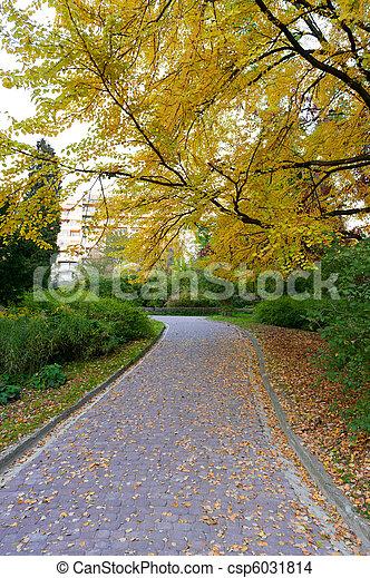 herfst, alleyway, park, straat, bedekte - csp6031814