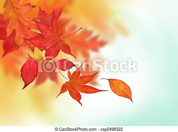 herfst, kleurrijke, dalingen - csp2498322