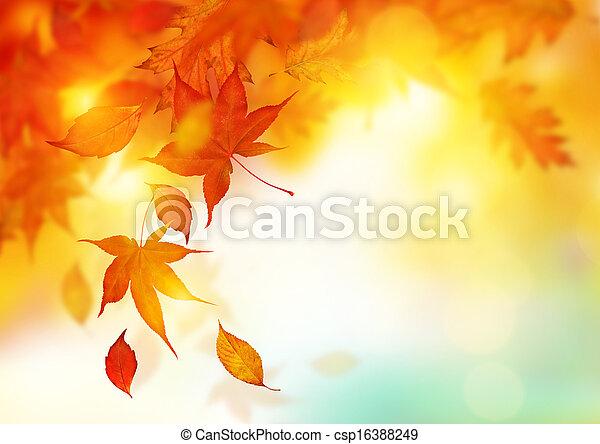 herfst, vallende verlofen - csp16388249