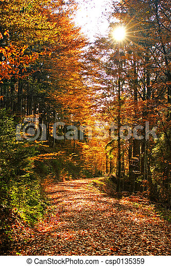 herfsten - csp0135359