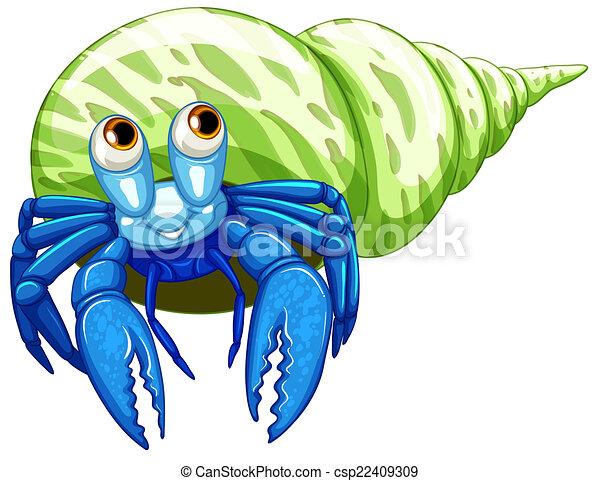 illustration of a close up hermit crab vector clipart search rh canstockphoto com  hermit crab clip art free