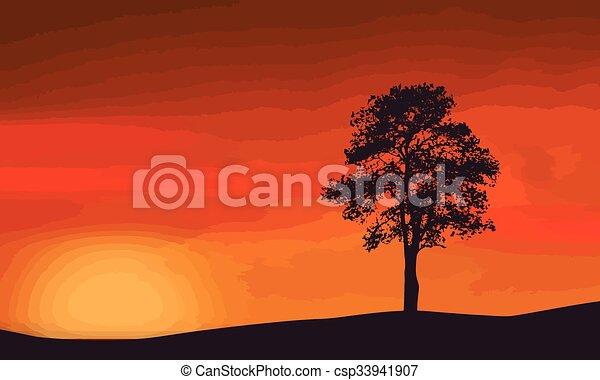 Un árbol solitario en una hermosa puesta de sol - csp33941907