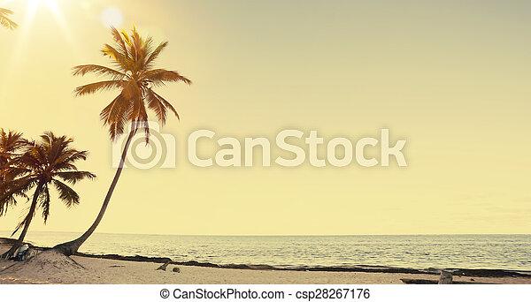 hermoso, arte, playa, retro, plano de fondo, vista - csp28267176