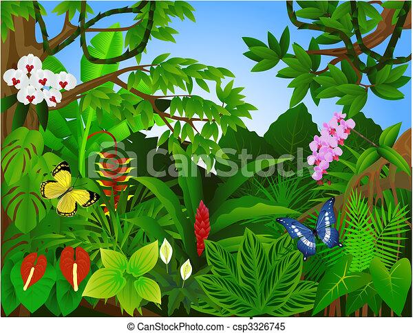 Hermoso bosque tropical - csp3326745