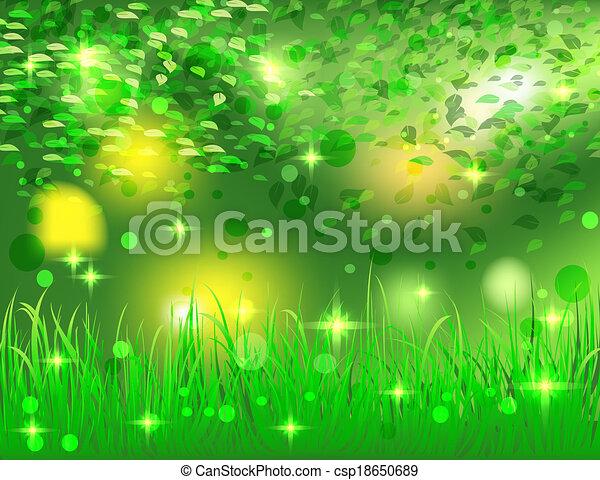 Hermoso bosque abstracto - csp18650689