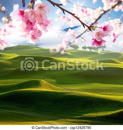 Fairway de un hermoso campo de golf - csp12429795