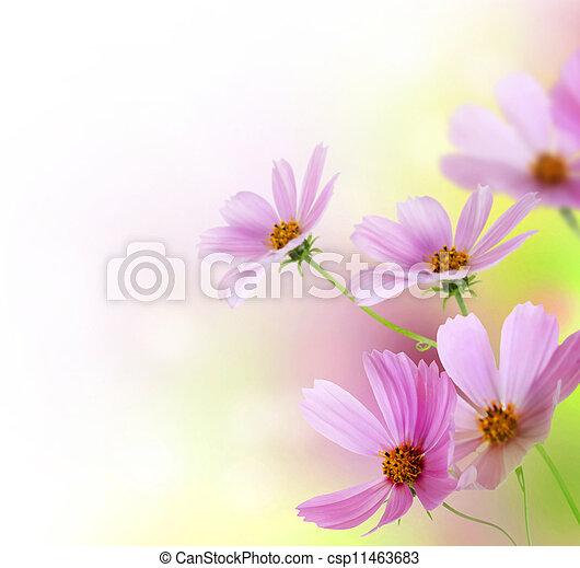 Hermosa frontera de flores. Diseño floral - csp11463683