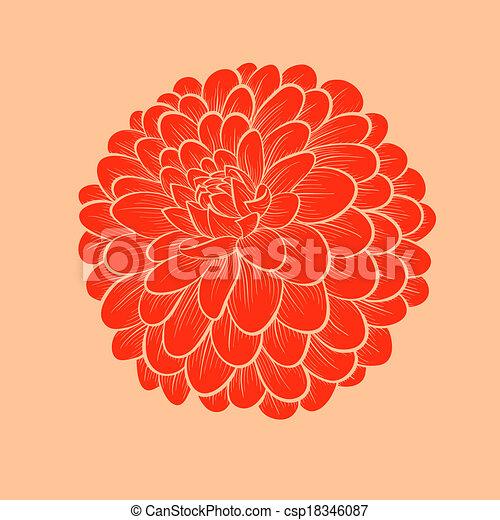 hermoso, gráfico, flor, estilo, aislado, líneas, contornos, plano de fondo, dalia, dibujado, blanco - csp18346087