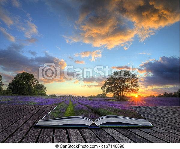 hermoso, magia, concepto, campos, maduro, imagen, lavanda, paisaje, afuera, cielo, creativo, encima, campo, libro, venida, atmosférico, páginas, nubes, vibrante, maravilloso, ocaso, inglés - csp7140890