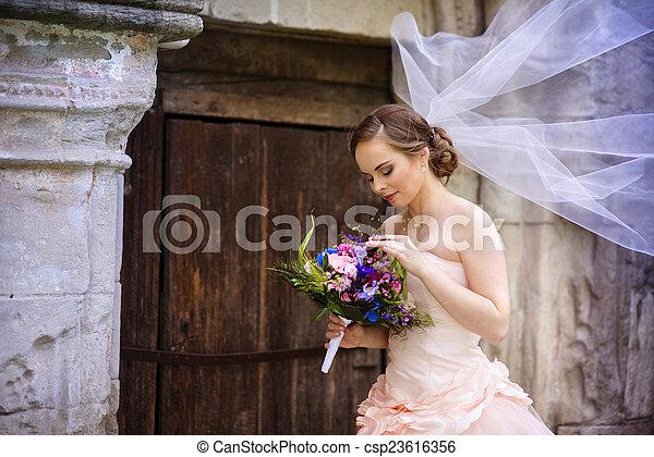 hermoso, novia, velo - csp23616356