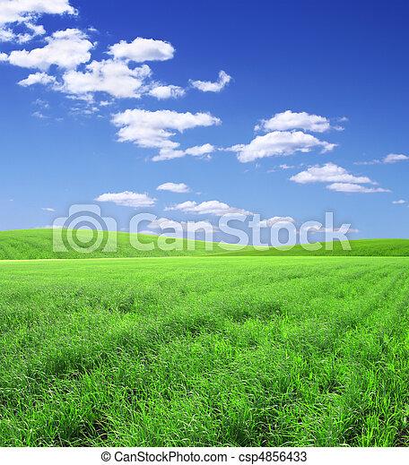hermoso, paisaje - csp4856433