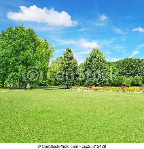 hermoso, parque, pradera - csp25312429