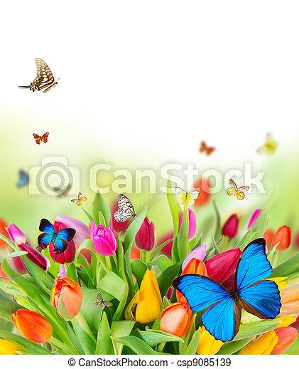 Hermosas flores de primavera con mariposas - csp9085139