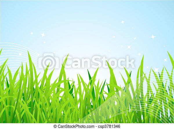Pradera de primavera hermosa - csp3781346