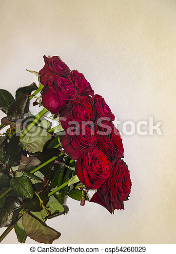 Hermoso Ramo Rosas Rojas Hermoso Fragante Ramo Luz Rosas